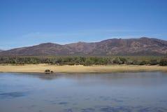 Afryka safari krajobraz z rzeki, łąki i góry backgrou, Obrazy Stock