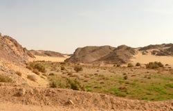 Afryka. Sahara. Zdjęcie Royalty Free