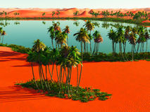 Afrykańska oaza Obrazy Stock
