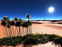 Afrykańska oaza Zdjęcie Stock