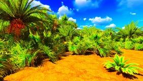 Afrykańska oaza Zdjęcia Stock
