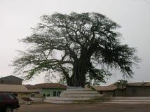 Afrykański drewno Zdjęcie Royalty Free