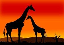afrykański landcape Zdjęcie Royalty Free