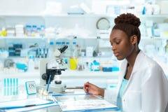 Afrykański naukowiec, medyczny pracownik, technika lub magistrant/magistrantka, Zdjęcie Stock