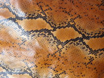 Afrykański rockowego pytonu skóry wzór Obrazy Royalty Free
