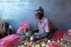 afrykański rolnik Obrazy Stock