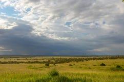 Afrykański sawanna krajobraz, Masai Mara, Kenja, Afryka Obrazy Royalty Free