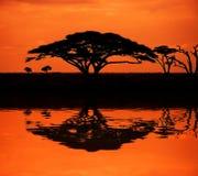 afrykański zmierzch Obrazy Stock