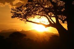 Afrykański zmierzch. Tanzania, Afryka Obrazy Stock
