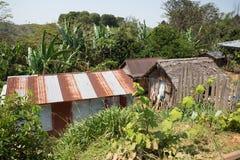 Afrykańskie malagasy budy w Andasibe regionie Obrazy Royalty Free