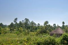 Afrykańskie tradycyjne budy w Kenja Fotografia Stock
