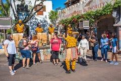 Afryka teren przy Zwierzęcym królestwem przy Walt Disney światem Fotografia Stock