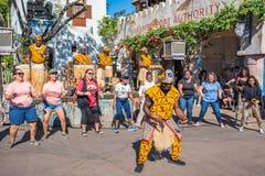 Afryka teren przy Zwierzęcym królestwem przy Walt Disney światem Obraz Stock