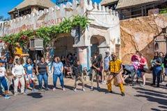 Afryka teren przy Zwierzęcym królestwem przy Walt Disney światem Zdjęcie Royalty Free