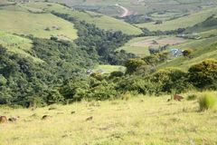 Afryka zielone ziemie Fotografia Stock