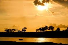 Afryka zmierzch Obraz Royalty Free
