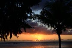 Afryka, zmierzch w Mont Choisy w Mauritius Zdjęcie Royalty Free