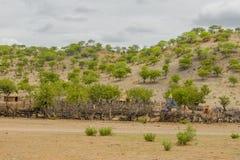 Afrykanów krajobrazy - Himba wioska Namibia Obraz Stock