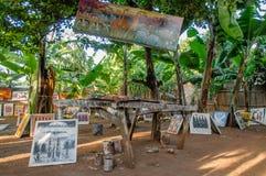 Afrykanów krajobrazy - Jeziorny Manyara park narodowy Tanzania Obrazy Stock