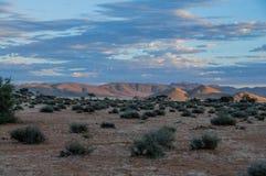 Afrykanów krajobrazy - Namib pustynia Namibia Obrazy Royalty Free