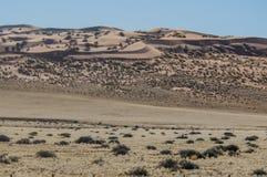 Afrykanów krajobrazy - Namib pustynia Namibia Fotografia Stock
