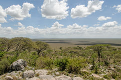 Afrykanów krajobrazy - Serengeti park narodowy Tanzania Fotografia Stock