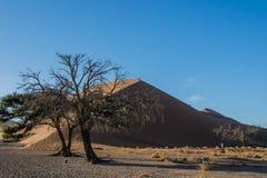 Afrykanów krajobrazy - Sossusvlei Namibia Obrazy Royalty Free