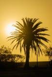 Afrykanów krajobrazy - Swakopmund teren Namibia Obraz Stock