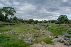 Afrykanów krajobrazy - Tarangire park narodowy Tanzania Zdjęcie Royalty Free