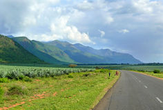 Afrykanie są na drodze. Obraz Stock
