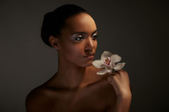 afrykanin Fotografia Royalty Free