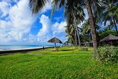 Afrykanin brzegowy Diani Fotografia Royalty Free
