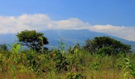 Afrykanin krajobrazowy Mozambik Obraz Stock