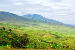 afrykanin krajobrazowy Tanzania Zdjęcia Royalty Free