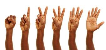 Afrykanin ręki pokazuje liczby z palcami Fotografia Stock