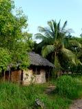Afrykanina dom Zdjęcie Stock