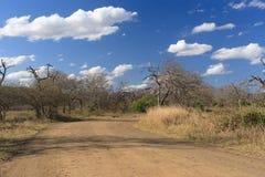 Afrykanina krajobraz Obrazy Royalty Free