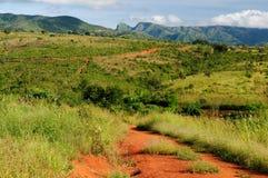 Afrykanina krajobraz Obrazy Stock