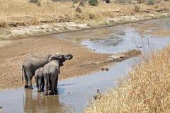 Afrykanina krajobraz Zdjęcia Royalty Free