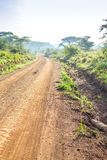 Afrykanina krajobraz - droga gruntowa przez sawanny, Kenja Fotografia Stock