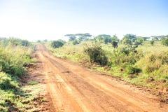 Afrykanina krajobraz - droga gruntowa przez sawanny, Kenja Zdjęcie Stock