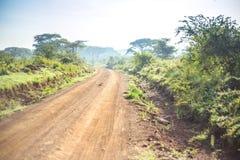 Afrykanina krajobraz - droga gruntowa przez sawanny, Kenja Zdjęcie Royalty Free