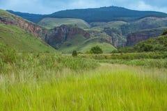 Afrykanina krajobraz w Mpumalanga Południowa Afryka Zdjęcie Royalty Free