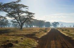 Afrykanina krajobraz w ranek mgle blisko jeziornego Nakuru Obraz Stock