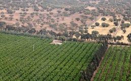 Afrykanina krajobraz: widok ziemia Zdjęcie Royalty Free