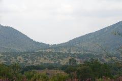 AFRYKANINA krajobraz Z POŁOGIMI wzgórzami I roślinnością Fotografia Royalty Free