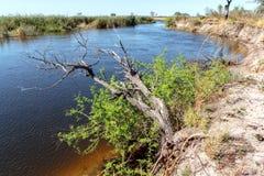 Afrykanina krajobraz z rzeką Fotografia Stock