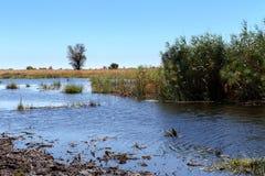 Afrykanina krajobraz z rzeką Zdjęcia Royalty Free