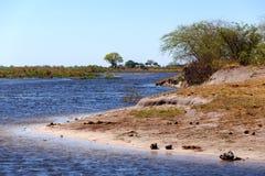 Afrykanina krajobraz z rzeką Obrazy Royalty Free