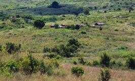 Afrykanina krajobraz z zielonymi lasowymi i borowinowymi budami Fotografia Stock